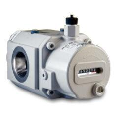 RVG/DKZ-ST G 10                                                                 -Rotační pístový plynoměr.br br Qmin=0,8m3/h,Qmax=16m3/h, DN 40, PN 16barbr (provedení přírubové nebo závitové)